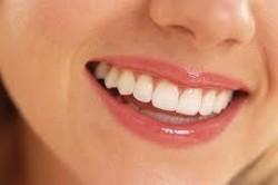 dentistry lynnwood